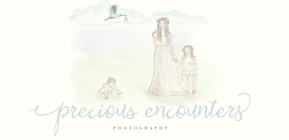 Precious Encounters Photography logo