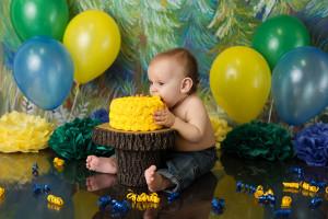 cake smash, yellow, woodland, green, blue
