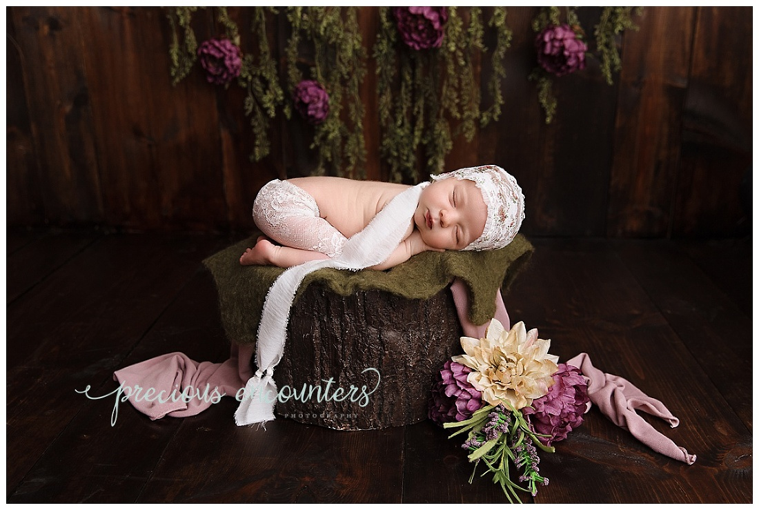 newborn, flowers, purple, vine, wood, stump