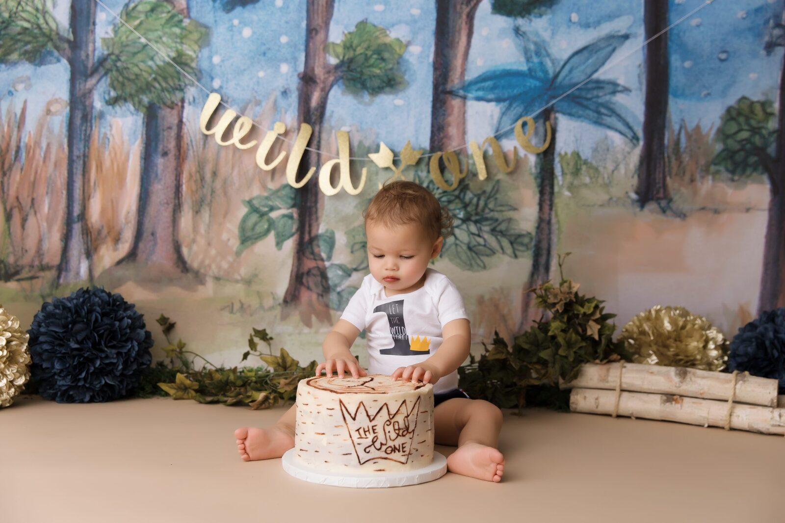 wild things, one, Colorado Springs, boy, cake smash