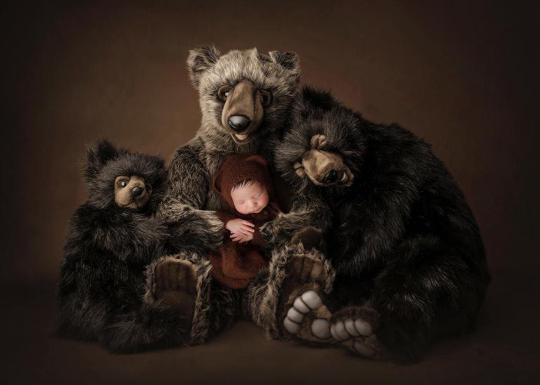 Big Island, Hilo, Kona,, bears, photographer, Colorado Springs
