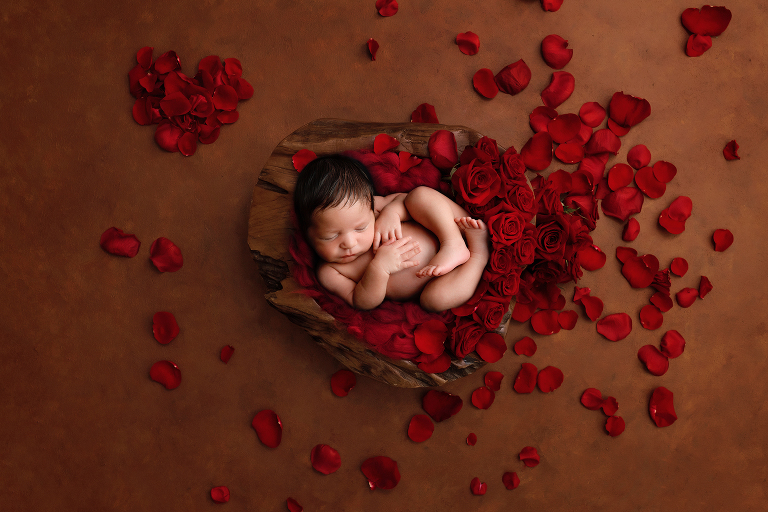 Big Island, Hilo, Kona, newborn, photographer, Colorado Springs, roses, brown